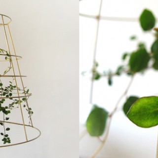 Photosynthesis Lamp