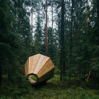 Estonian Forest Installation