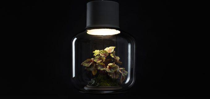 Mygdal Plantlight